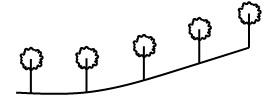 ردیف درخت